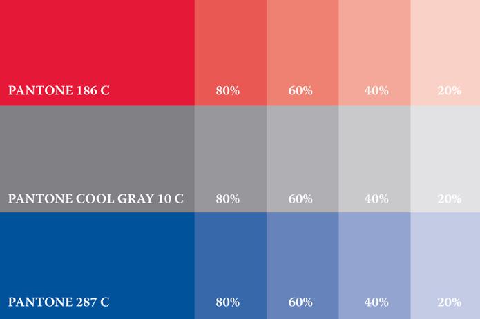 paleta boja za vizualni identitet udruge imota