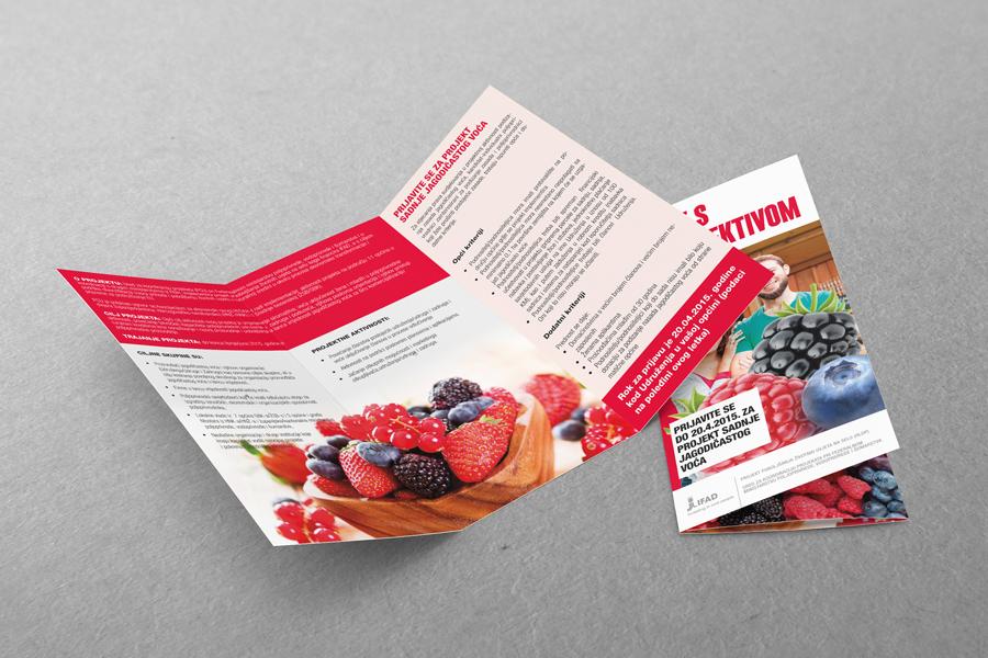 Medijska kampanja promocije jagodičastog voća, dizajn brošure, ifad
