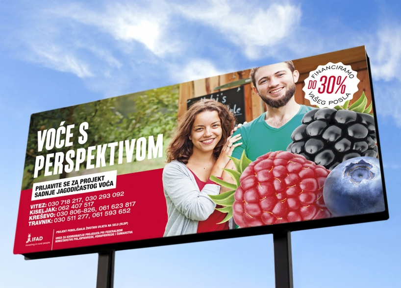 Media campaign of berry fruit promotion