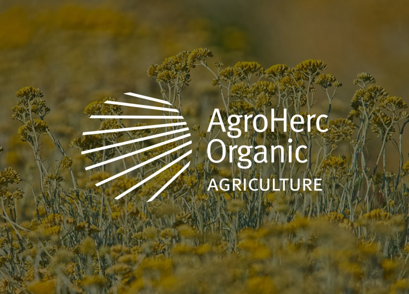 Visual Identity Design for Agroherc Organic Agriculture