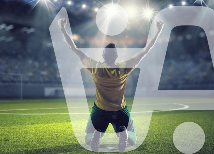 Vizualni identitet Arena Sportske Agencije