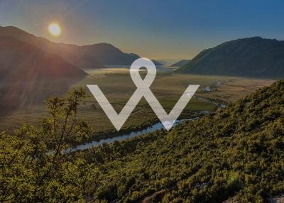 Visual Identity of Vera Winery and Wine Label Design