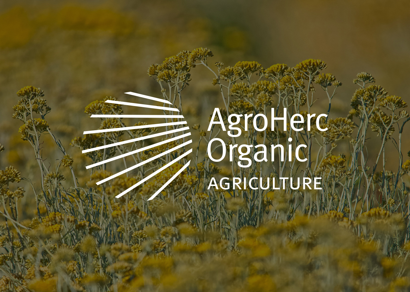 Vizualni identitet tvrtke AgroHerc Organic Agriculture