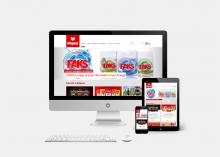 Mepas website design